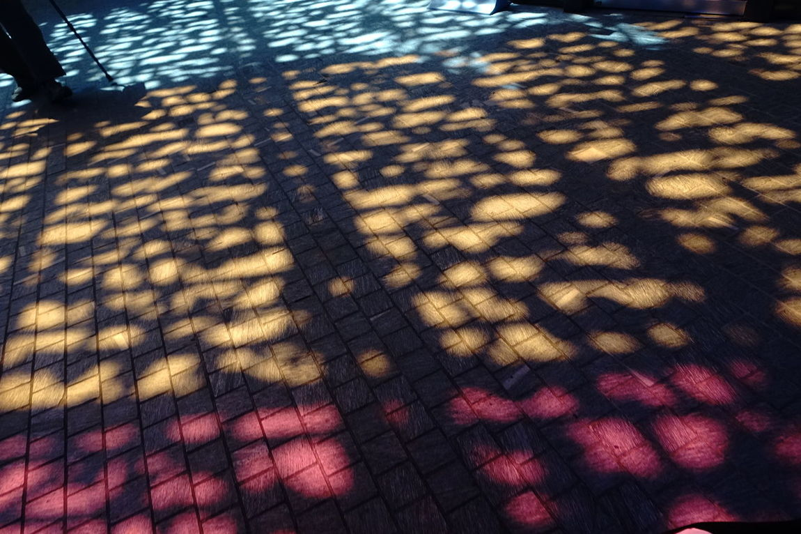 Colours Colours And Light Day Elevated View Illuminated No People Orange Color Shadows & Lights Sunlight Tile