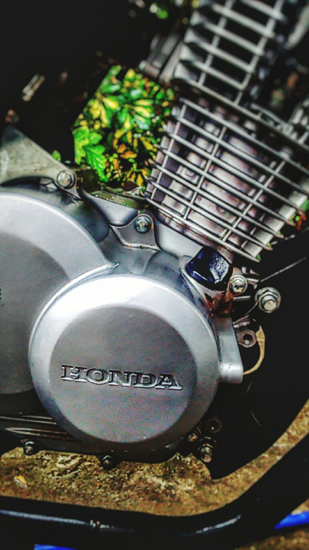 Honda Cb125 First Eyeem Photo