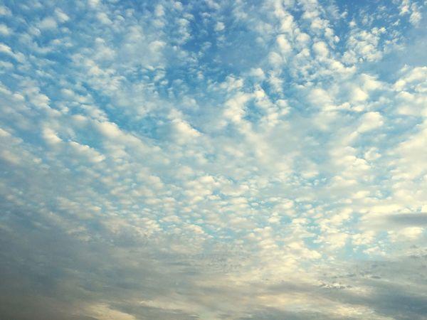 校园天空 First Eyeem Photo