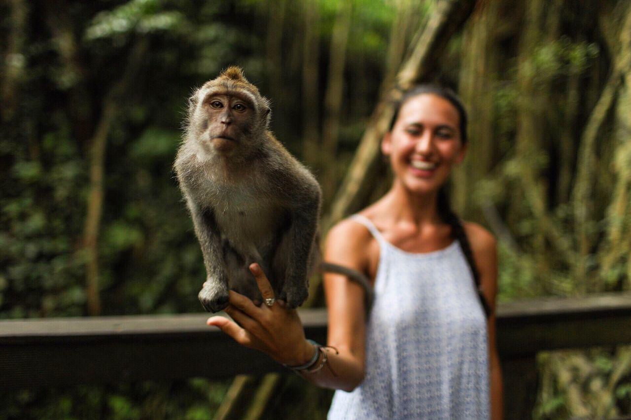 Monkeying around. Smiling Monkey Monkeys INDONESIA Sacred Monkey Forest Ubud Animal Animal Lover