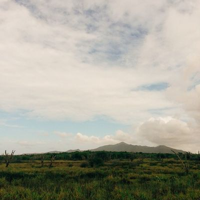 Bajo la mirada eterna de las montañas de Macanao empezamos a caminar por el sinuoso camino casi escondido que luchaba por mantenerse visible. Después de todo el también es parte de todo lo que nos rodeaba. IslaDeMargarita Venezuela Vscocam Adventureseries January