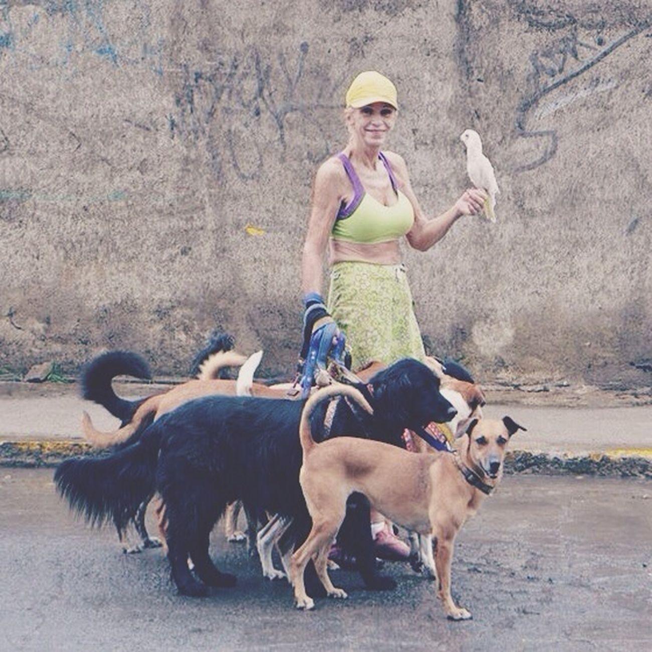 Furry Friends San Juan Del Sur , Nicaragua Doggystyle KateMendezPhotography