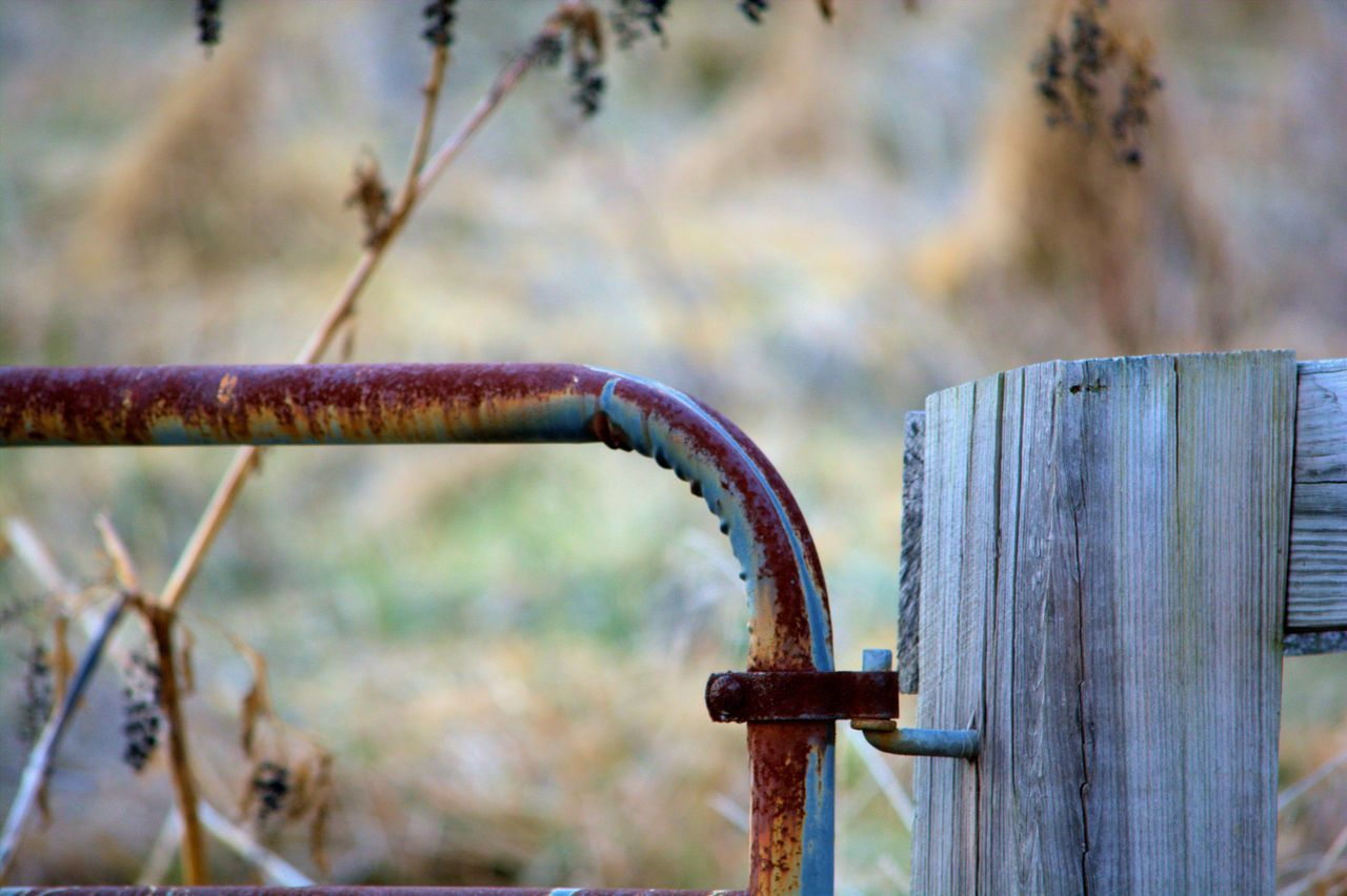 Rusty Pipe Attached On Wooden Plank