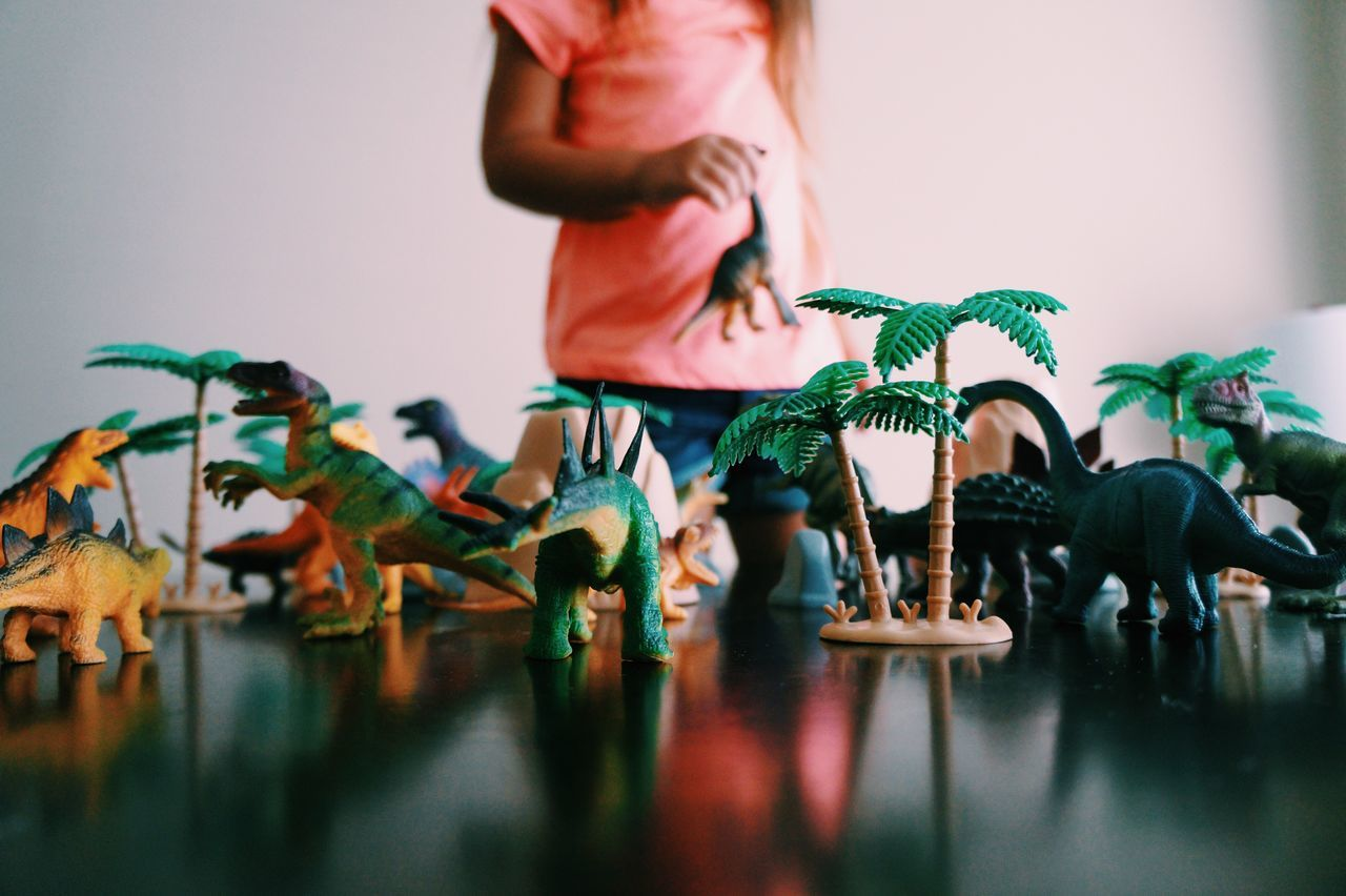 Dinosaur Toys Arranged On Table At Home
