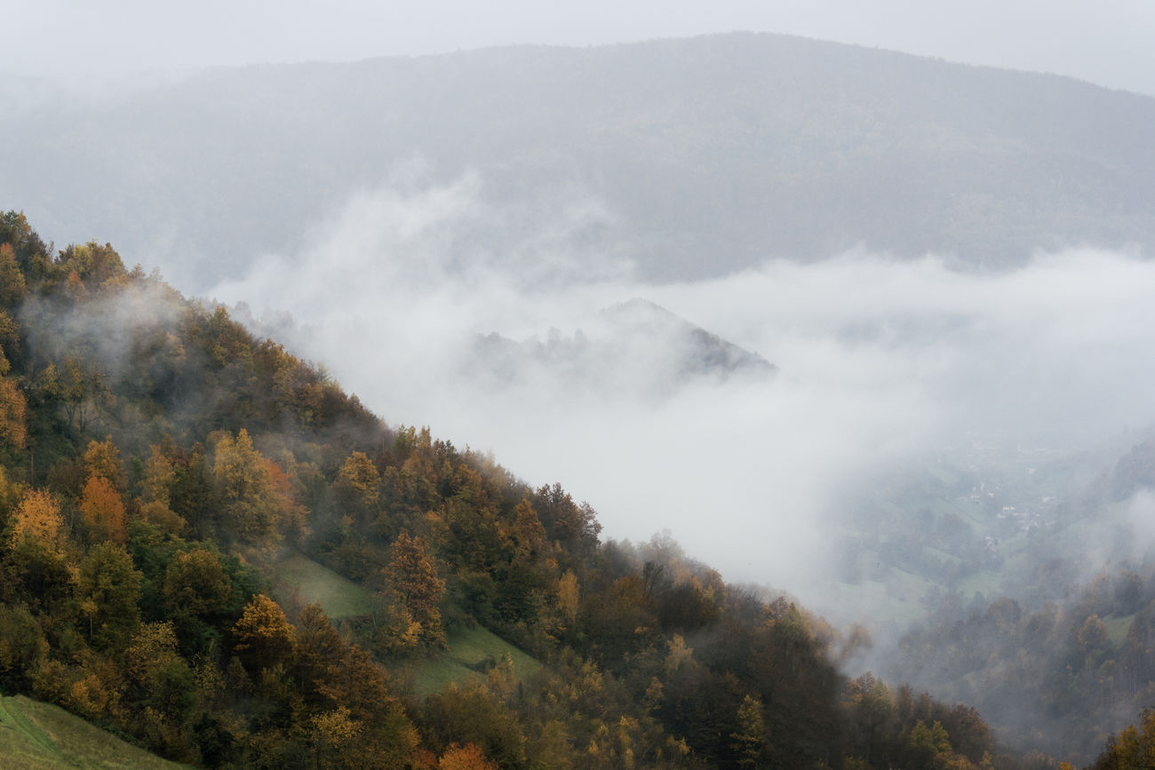 Beautiful stock photos of herbst,  Beauty In Nature,  Bosnia And Herzegovina,  Day,  Fojnica