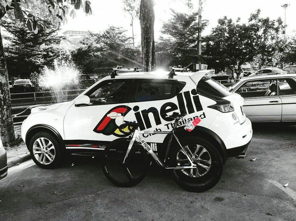 i love Cinelli Bicyclelove LifeIsTooShort RidingBike Enjoyeverymoment Cinelli Mash Parallax Velodrome Fixed Gear Single Speed Track Bike Thailand