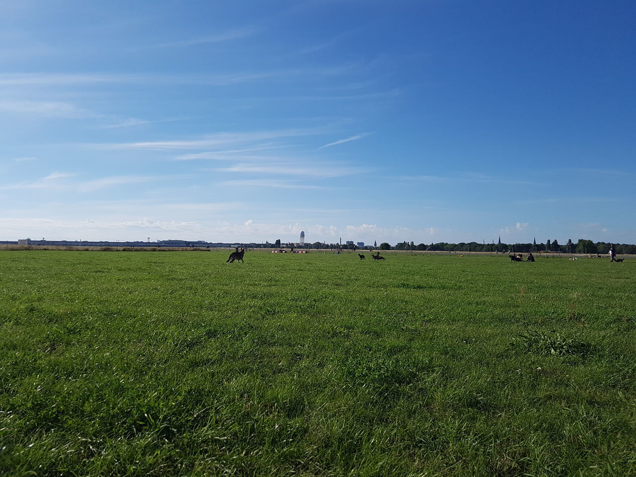 Beautiful day in Tempelhof airfield. Abundance Agriculture Beauty In Nature Day Dog Park Field Growth Landscape Large Group Of People Nature Outdoors People Rural Scene Scenics Sky Tempelhofer Feld Water