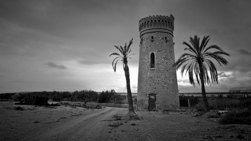 Architecture Cloud - Sky Cultura Day History Landscape Medieval No People Outdoors Palm Tree Palmeras Sky The Past Torre Tree