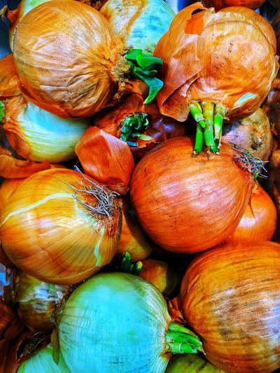 Onion Onions Full Frame No People Backgrounds Close-up Day Pumpkin Outdoors Food Nature Freshness