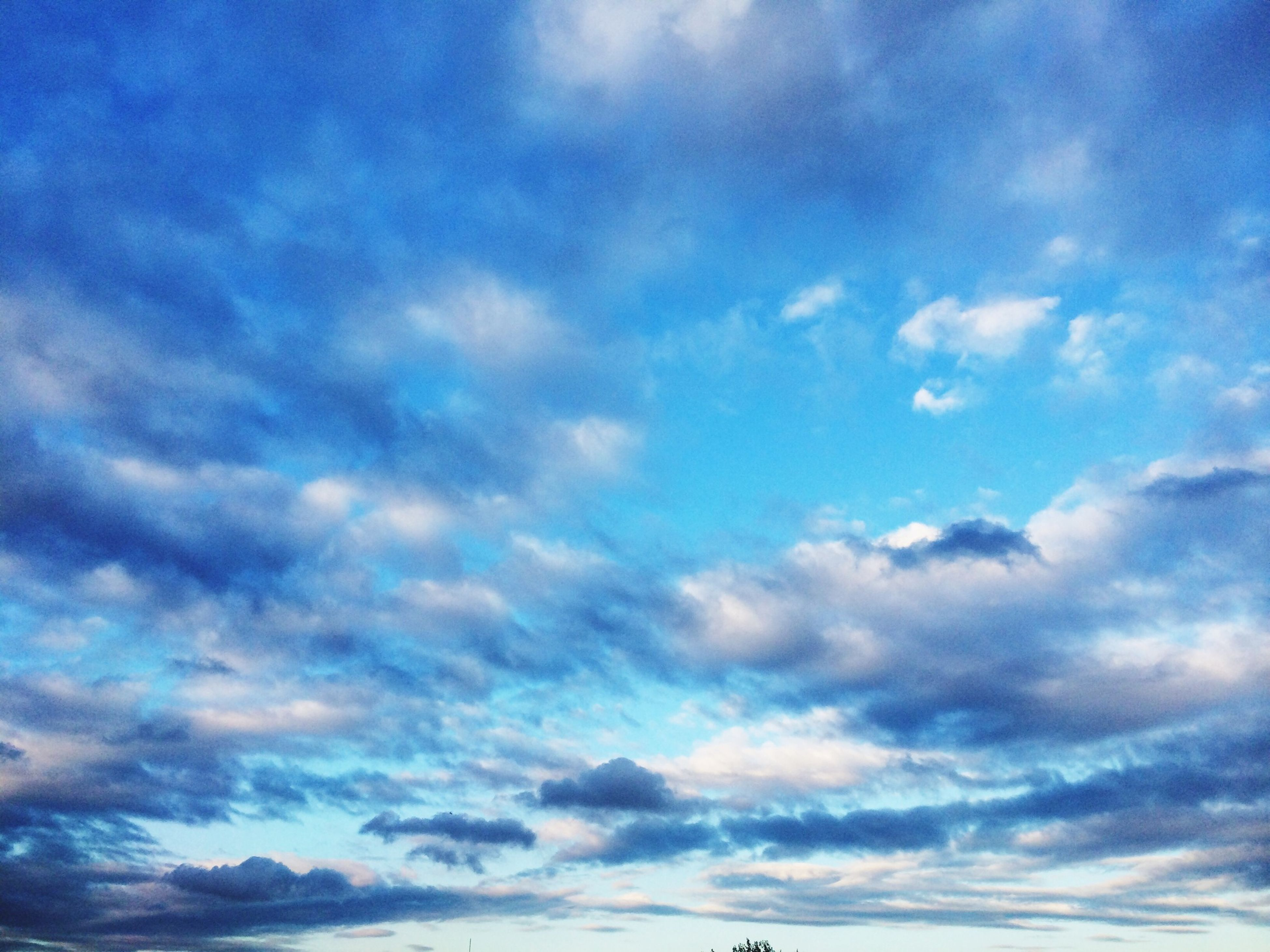 sky, low angle view, cloud - sky, sky only, blue, beauty in nature, tranquility, scenics, cloudy, tranquil scene, nature, cloudscape, cloud, backgrounds, idyllic, outdoors, majestic, no people, full frame, white color