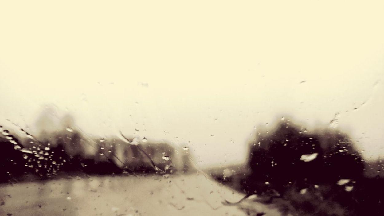 Rain 11days Starting Over New Life Sobriety  Stillfocus Still Focusing