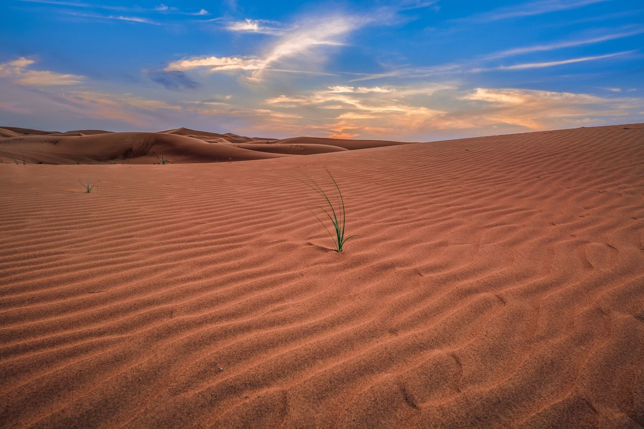 Sand Dune Sand Sky Nature Landscape Scenics Arid Climate Desert Beauty In Nature Outdoors Tranquil Scene Tranquility Cloud - Sky Day No People