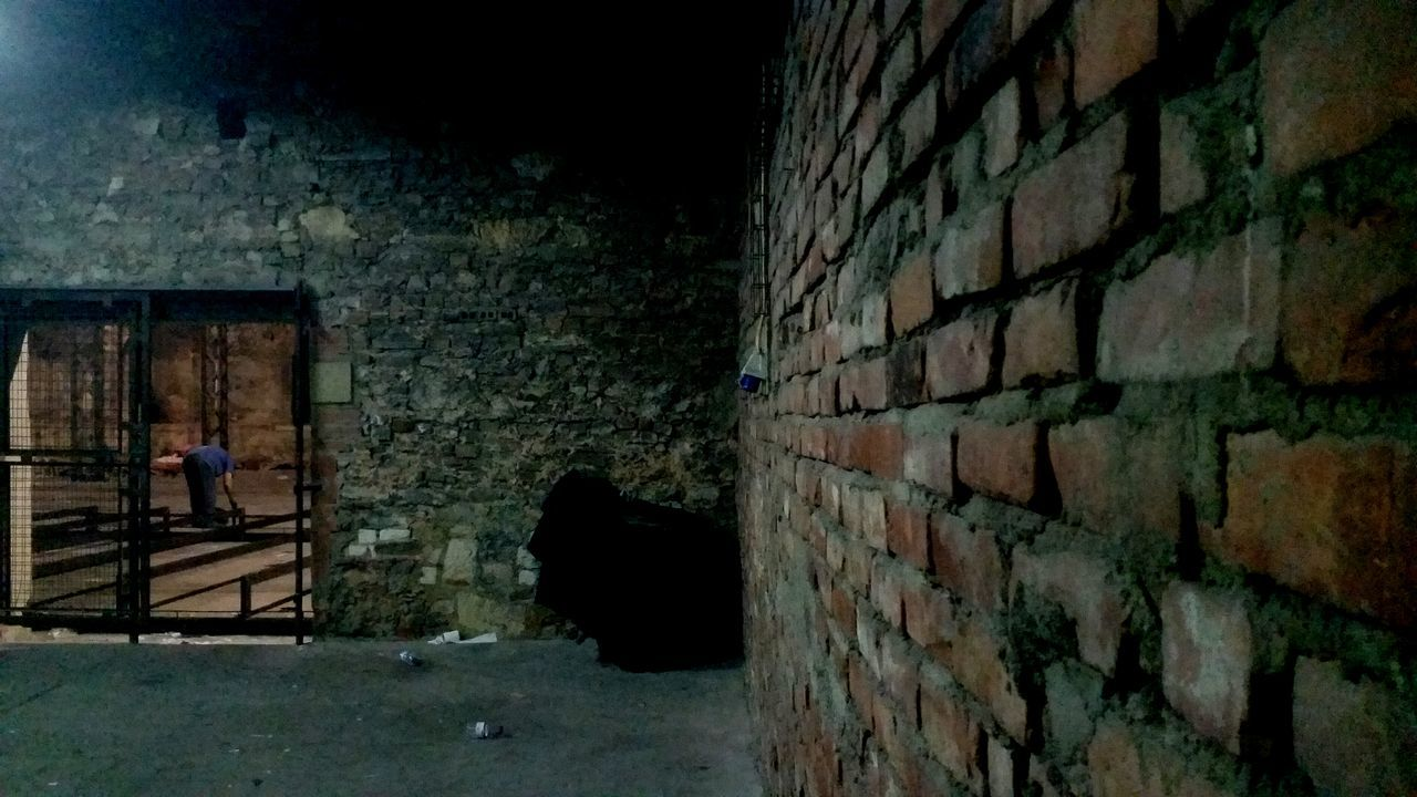wall - building feature, brick wall, architecture, built structure, one person, standing, building exterior, outdoors, day, real people, animal themes, people