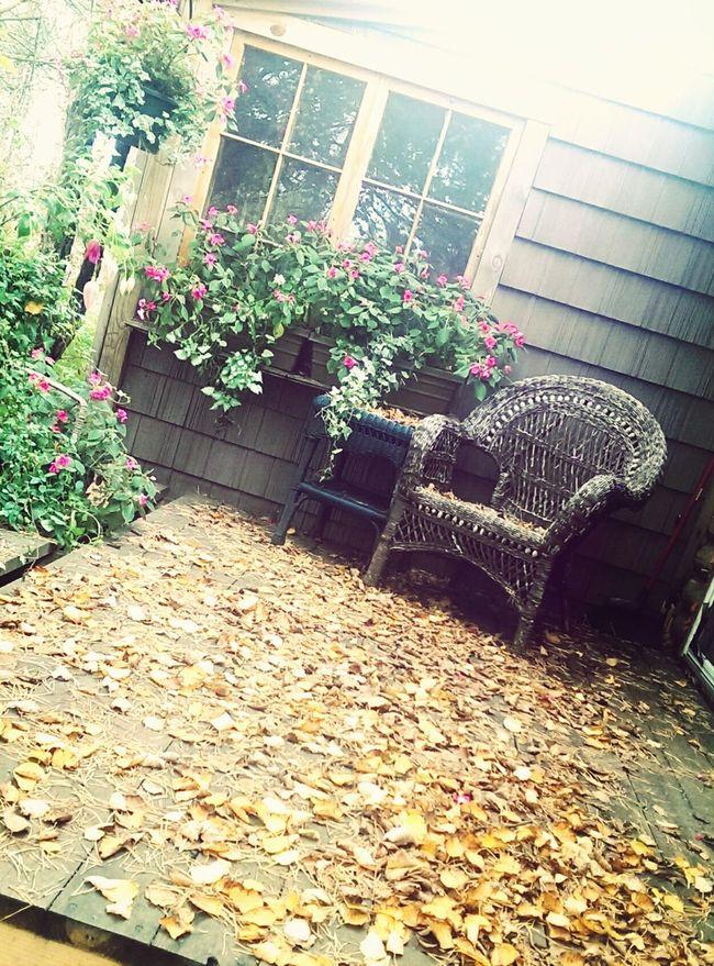 Fall Is A Beautiful Season