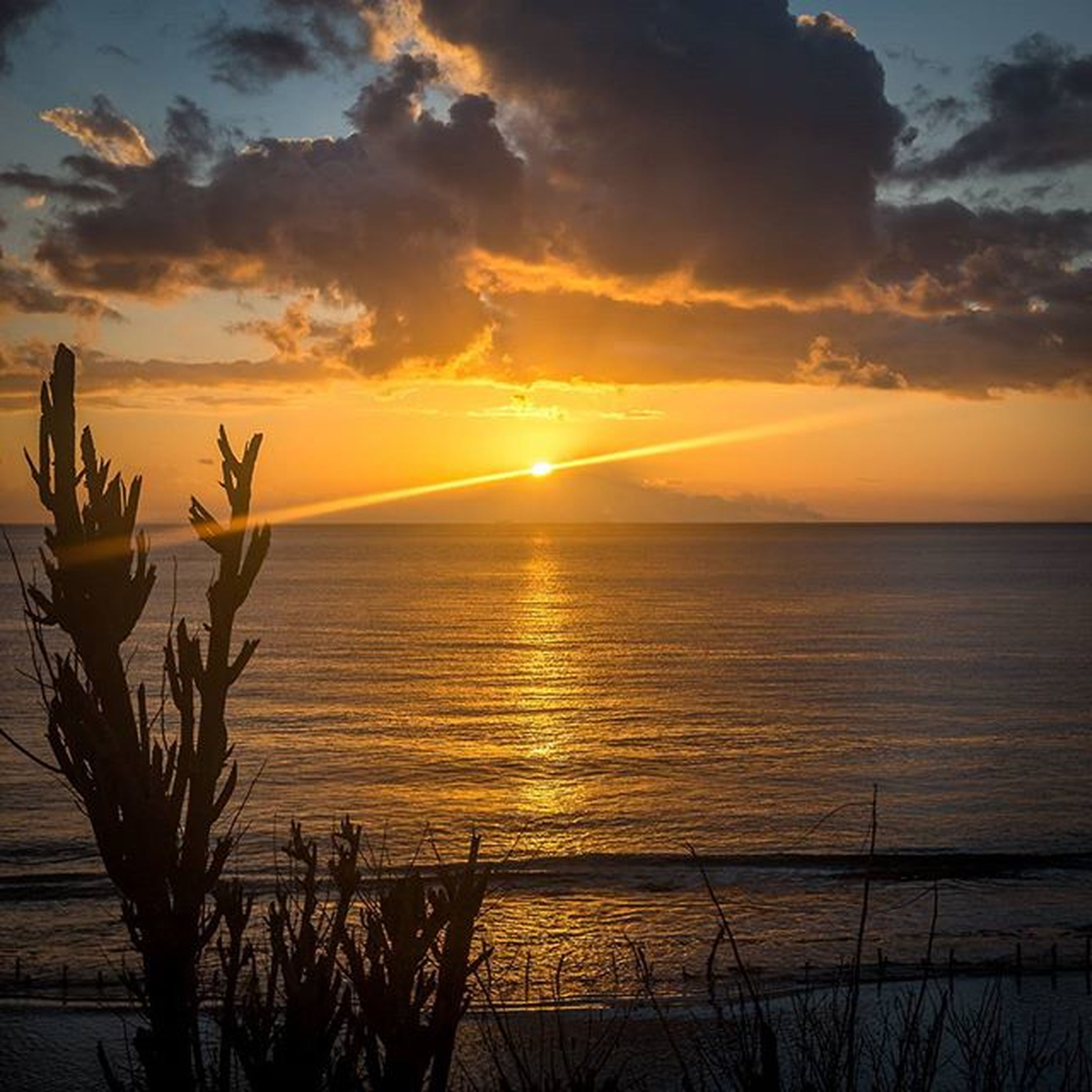 sunset, horizon over water, water, sea, sky, scenics, beauty in nature, tranquil scene, sun, orange color, tranquility, nature, cloud - sky, idyllic, reflection, silhouette, cloud, beach, sunlight, plant