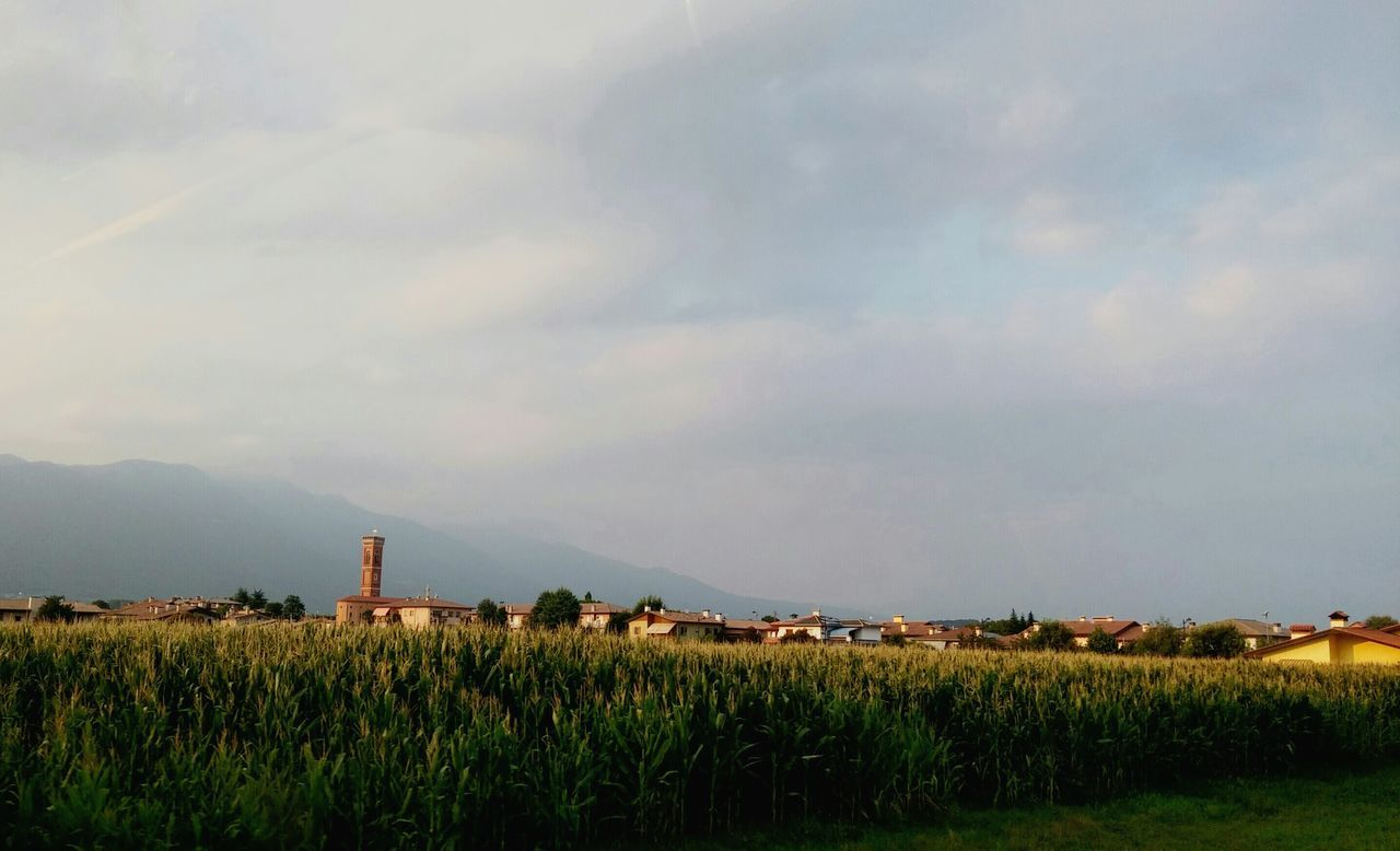 Traveling Italy❤️ Bassano Del Grappa Sky Taking Photos Hanging Out Eye4photography  Bycar First Eyeem Photo Veneto Check This Out Summertime Landscape Beautiful Day EyeEm Nature Lover EyeEm Best Shots - Landscape Peace And Quiet Clouds And Sky LGg3photography Powerofnature Travelphotography Cornfield