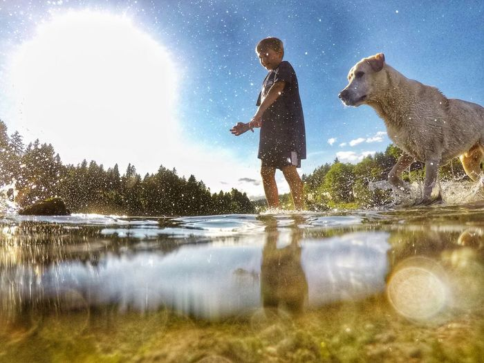 Water Lake Fun One Person Reflection Outdoors One Animal Nature Leisure Activity Day Dog Standing Childhood Happiness Sky Boys Men People Pets