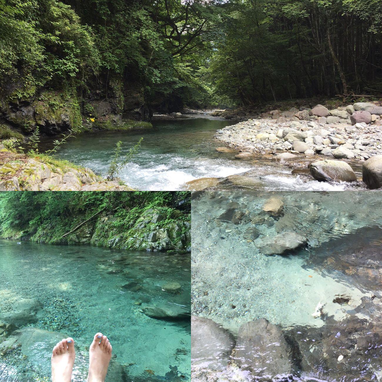 Enjoying Life Hi! 森 大自然 川 Enjoy Swim 癒し River Fishing Landscape Japan 風景 Forest Happy 絶景 Superb View