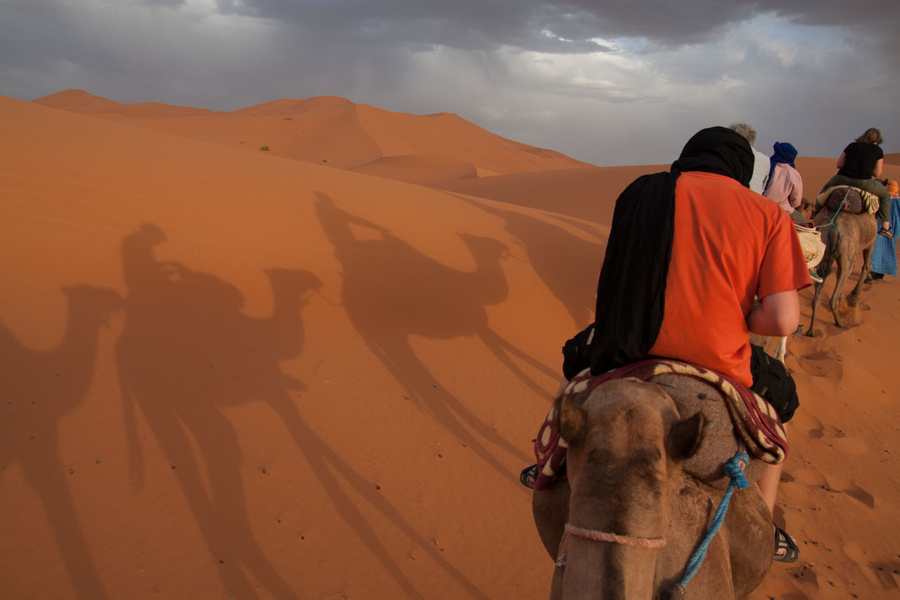 Beautiful stock photos of desert, Adventure, Camel, Casual Clothing, Day