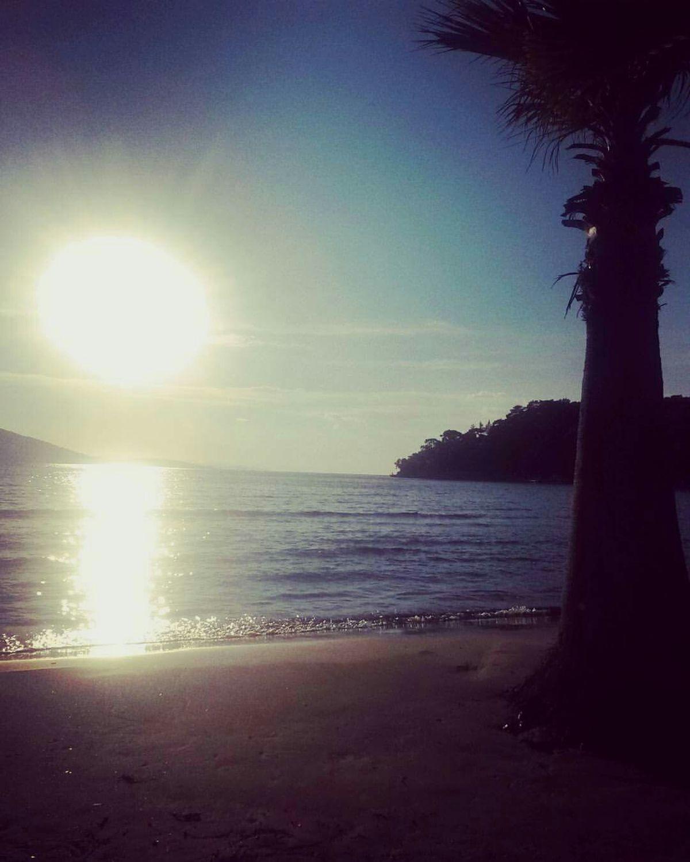 Sea Beach Horizon Over Water Water Reflection Nature Sunlight Beauty In Nature Scenics Sky Tranquil Scene Sunset Outdoors Tranquility Tree Wave Sand No People Sunbeam Sun ✌️😄  🏖🏝🌅🌞🌝☉🌴 Photo 📱📷my Camera Photo Light