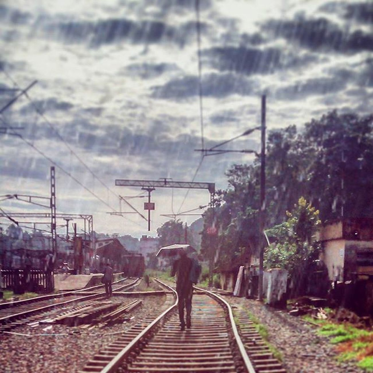 Walking Hazards™ 🙅👷👮👽👣 Travel Travelogue Manontrack Spotclick Tiltnshift Kottayam Offtokochin Morning Rain Love Strangeronframe Insta Instamood Instalike Instadaily F2f L4l Followforfollow Follow Followmefollowyou Peace