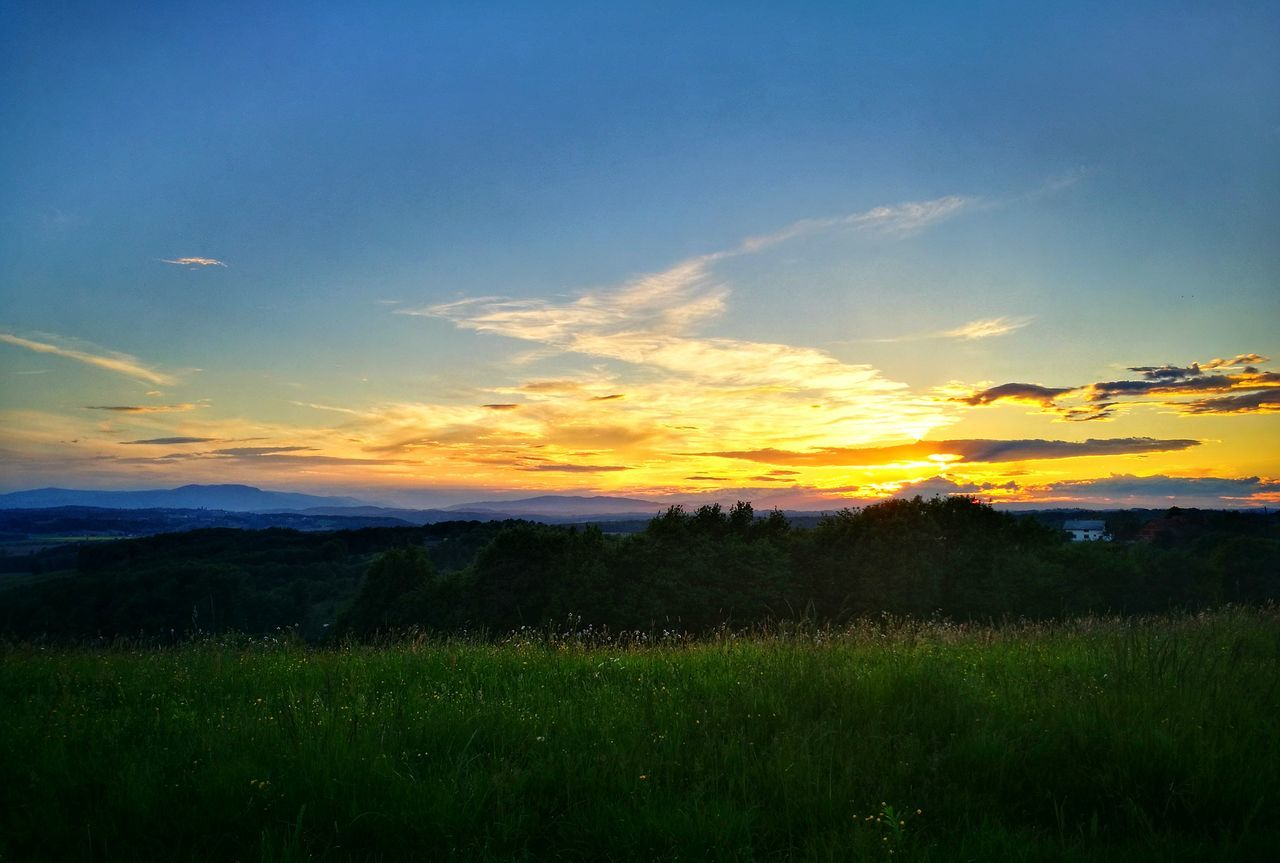 Cloud - Sky Beauty In Nature Landscape Field Dramatic Sky Sunset Nature Gold Colored Sun Sunlight Orange Color Grass Green Color Sun_collection Sunset Lovers Sunset And Clouds  Field Freshness No People Beauty In Nature Outdoors Sky LoveNature Love Taking Pictures ❤️ Waw