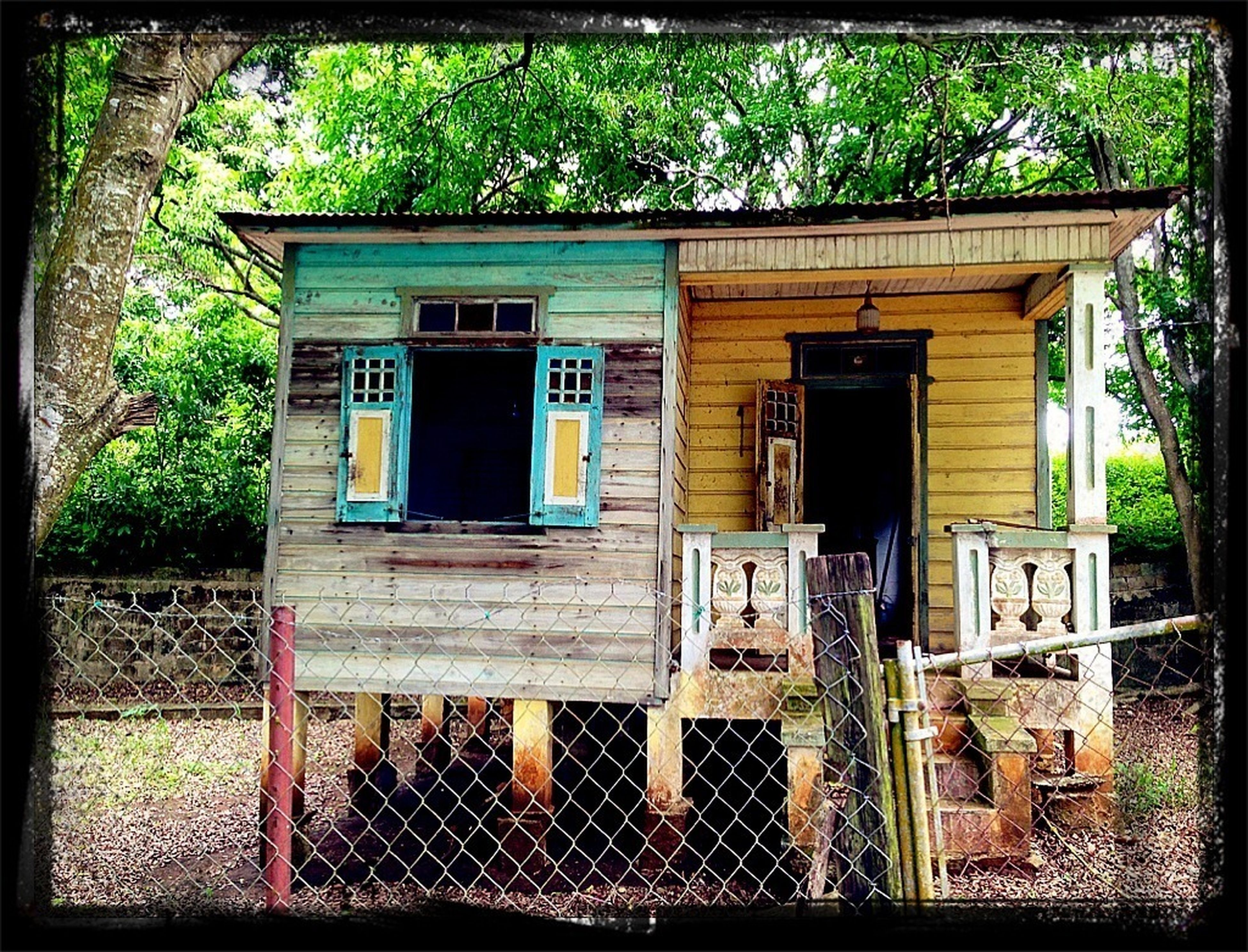 transfer print, auto post production filter, building exterior, built structure, architecture, house, tree, window, outdoors, day, residential structure, abandoned, grass, old, no people, closed, sunlight, door, residential building, obsolete