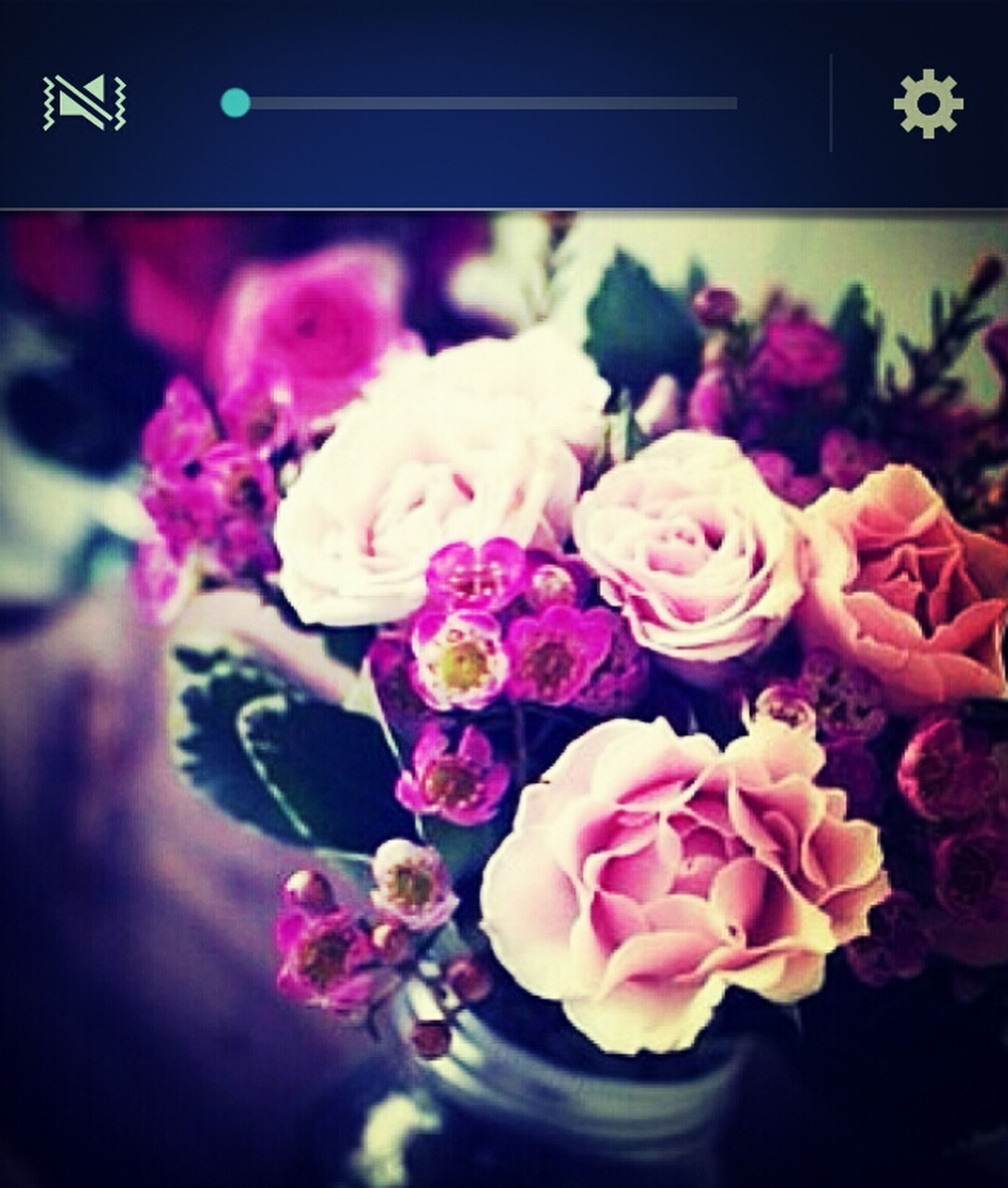 flower, petal, fragility, freshness, indoors, flower head, rose - flower, close-up, beauty in nature, pink color, bouquet, bunch of flowers, vase, nature, growth, blooming, decoration, plant, focus on foreground, flower arrangement