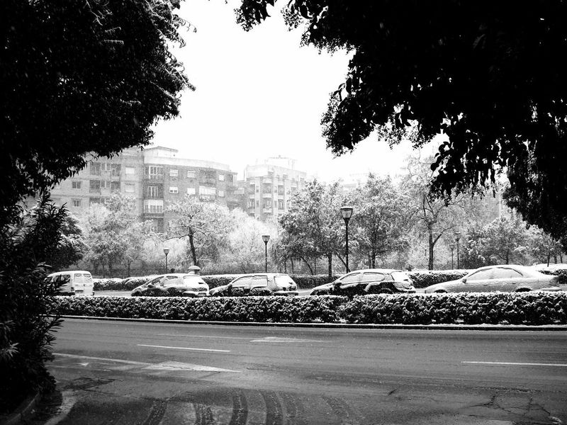 Black & White City In A Row Black And White Photography Blackandwhite Building Exterior Built Structure Car City Day Eyeemblack&white Land Vehicle Nature No People Outdoors Road Sky Snow Street Transportation Tree