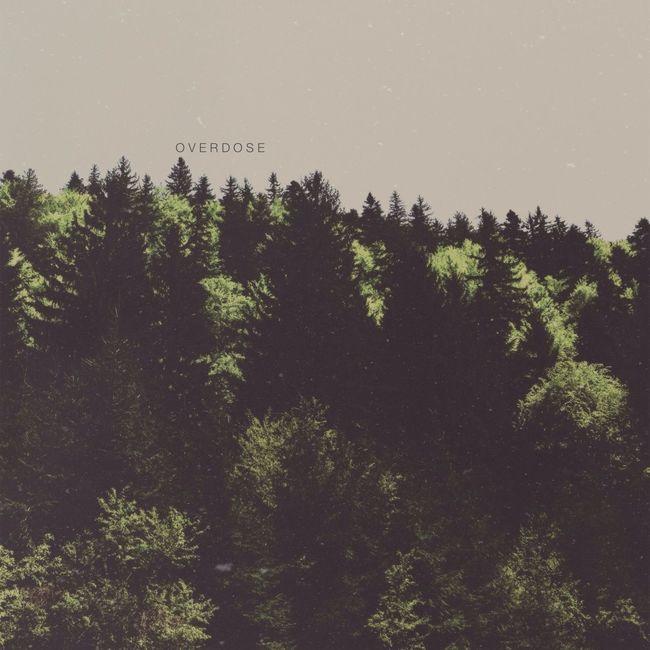 Nature Minimalism Simplicity AMPt_community
