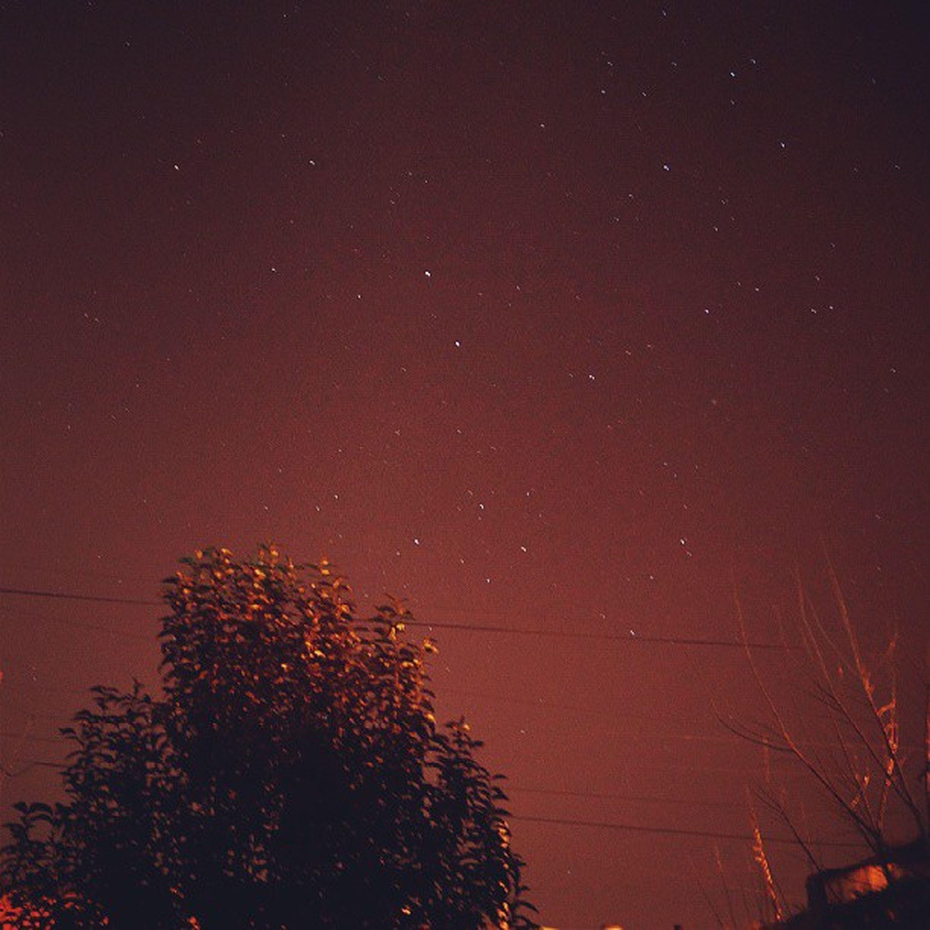 Bella Noche Goodnight / HappyNigh
