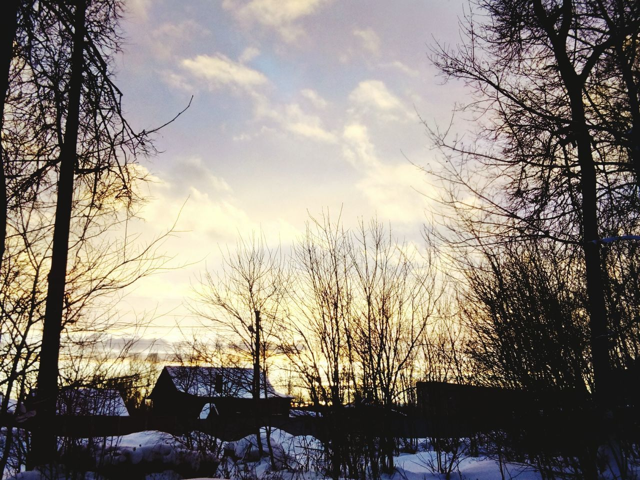 winter, bare tree, tree, snow, sky, nature, cold temperature, sunset, beauty in nature, tranquility, silhouette, no people, outdoors, cloud - sky, scenics, tranquil scene, branch, low angle view, day