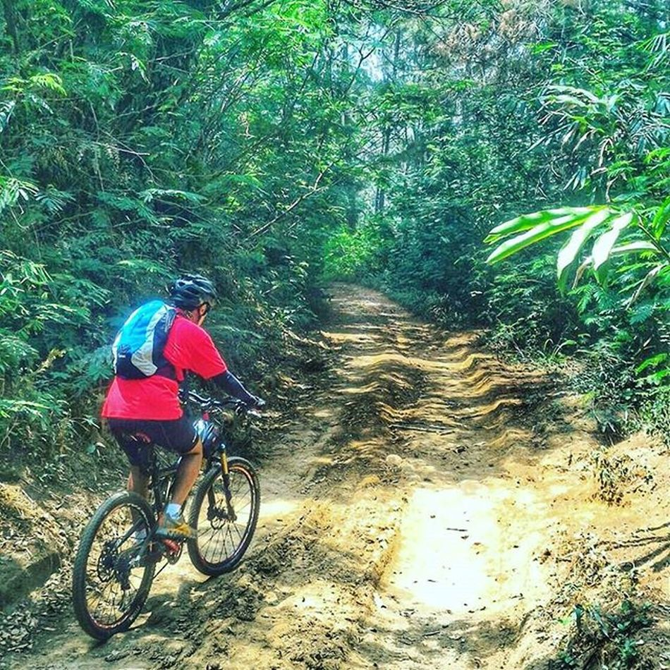 On muddy trail, under the shade of green trees, among best friends of Sefo