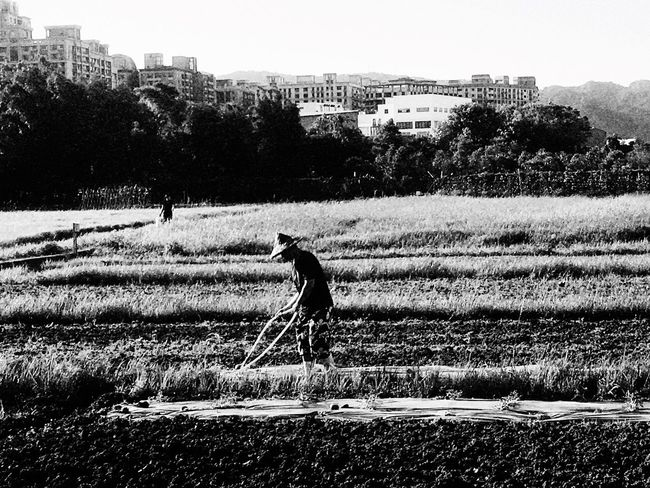 Farm。 EyeEm Gallery EyeEm Best Shots - Black + White 2016 EyeEm Awards Everything In Its Place How Do We Build The World? TOWNSCAPE EyeEmBestPics Clouds And Sky The Tourist Taking Photos Lifestyle Photography Tree Sanxia
