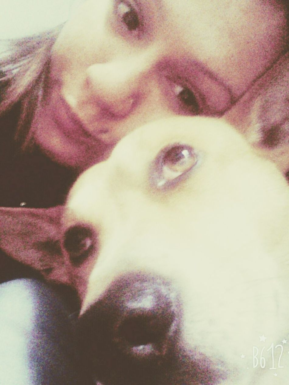 Amore della siaaa Dog Love Milos ❤