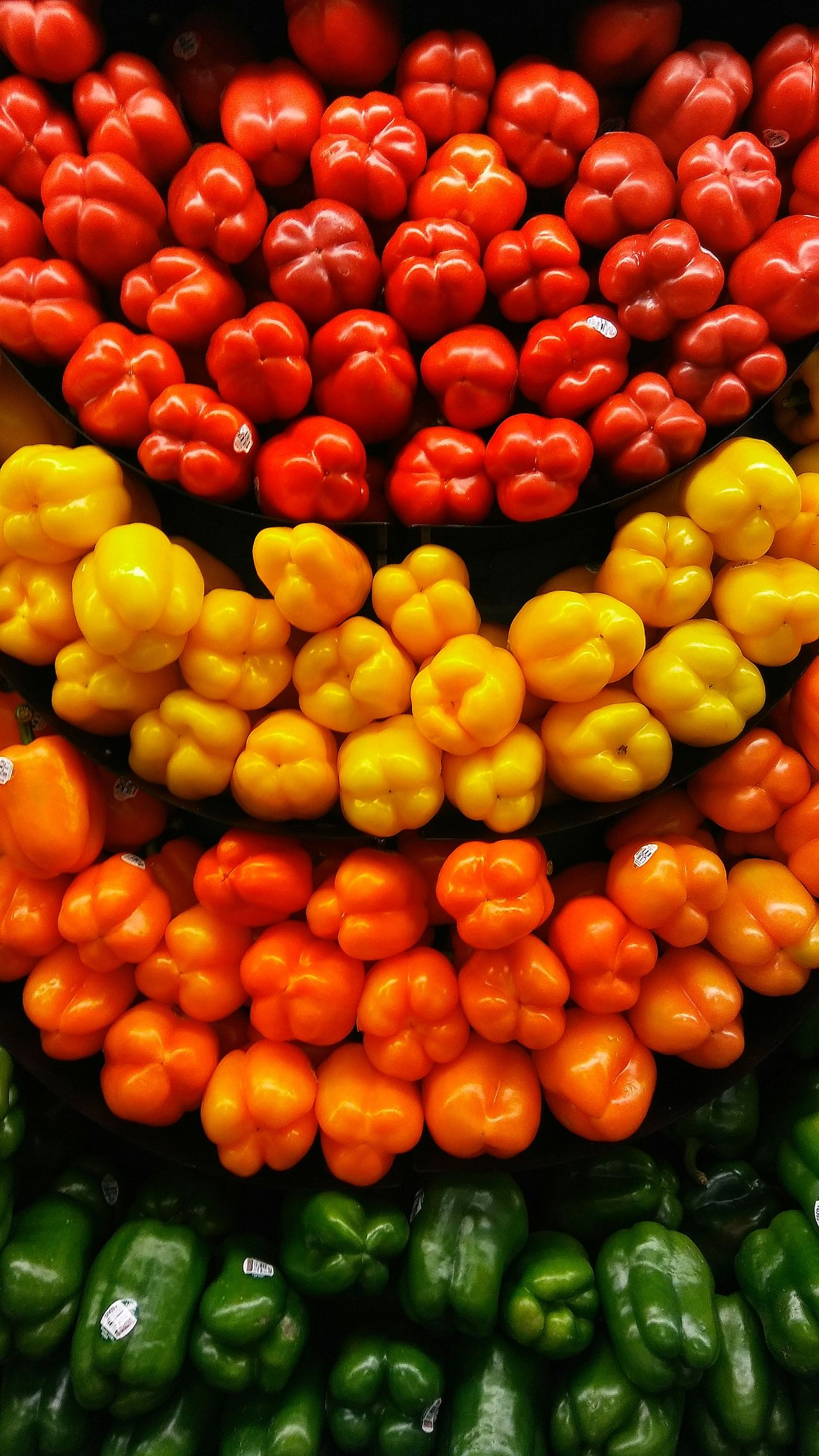 Check This Out Red Bell Pepper Yellow Bell Pepper Orange Bell Peppers Green Bell Pepper