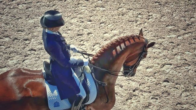 Animal Themes Black Tall Hat And Boots Brown Class And Elegance Day Domestic Animals Dressage Competition Dressage Olympic Trial Eleganthe Stance High Angle View Horse Leisure Activity Lifestyles Low Section One Animal Outdoors Person Real People Sand Shoe Standing Sunlight