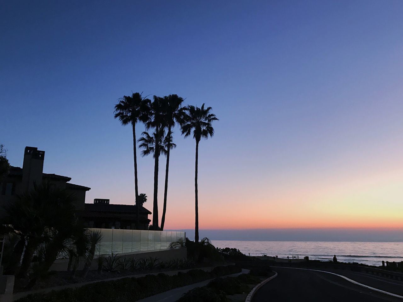 Palm Tree Sea Clear Sky Sky Scenics Beach Nature Blue No People Outdoors Sandiego Sunset Peace Sunsetcliffs Photography Colors Pink Yellow Love California WestCoast View Water Horizon Over Water Palm Frond