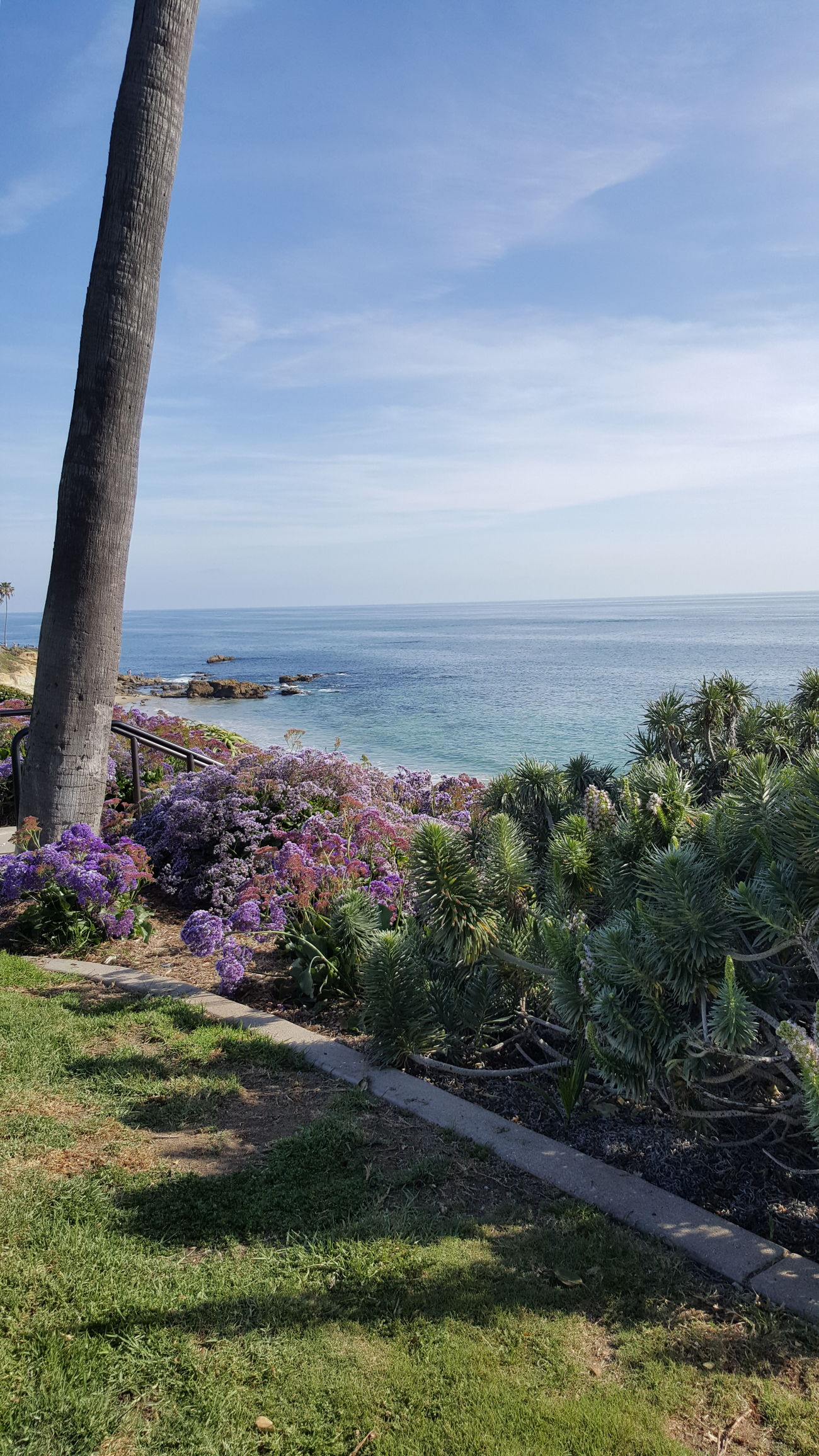 My most beautiful moment of the day in Heisler Park at Laguna Beach. Heislerpark Laguna Beach Beautiful Nature Beautiful Moments Tranquility March 19