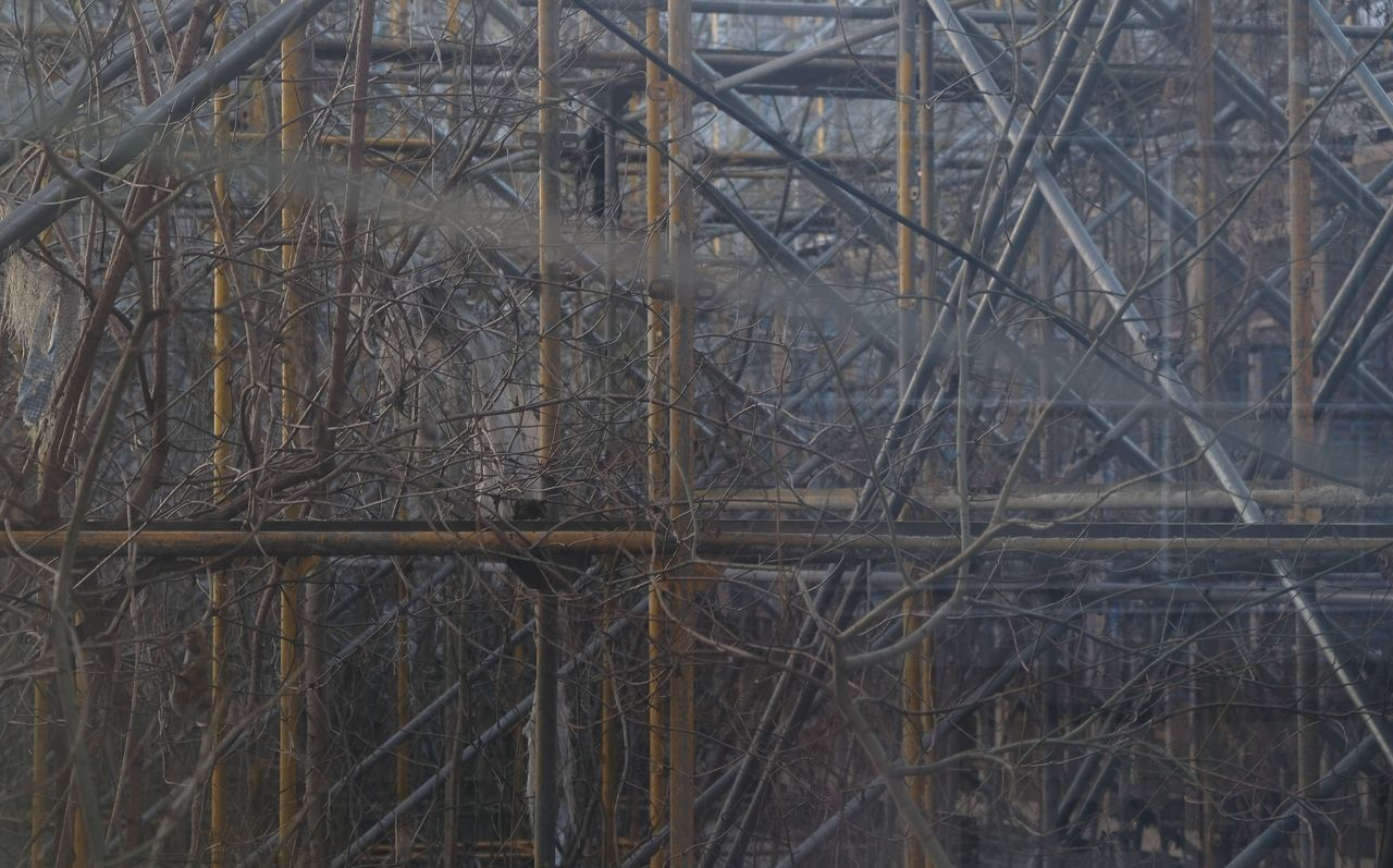 Abandoned Places Construction Construction Site Overgrown Scaffolding Abandoned Abandoned Buildings Backgrounds Bare Tree Branch Construction Area Dead Plant Dried Plant Lost Places Organism Overgrown And Beautiful Overgrown Building Overgrown Nature Overgrown Places Rank Scaffolding Materials