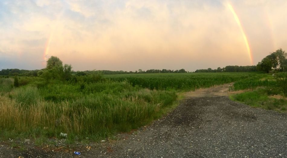 IPhoneography Rainbow Doublerainbow Nature NatureAtItsBest NatureAtItsFinest Nofilter No Filters Or Effects Rainbow Arch Double Rainbow No People No Filter No Edit/no Filter Dirt Road Dirt Path Green Color Green