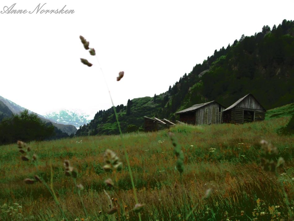 Austria Beauty In Nature Grass House Idylle Landscape Nature No People Outdoors Stille Tirol  Tranquility Österreich Австрия Безлюдно Ландшафт EyeEmNewHere