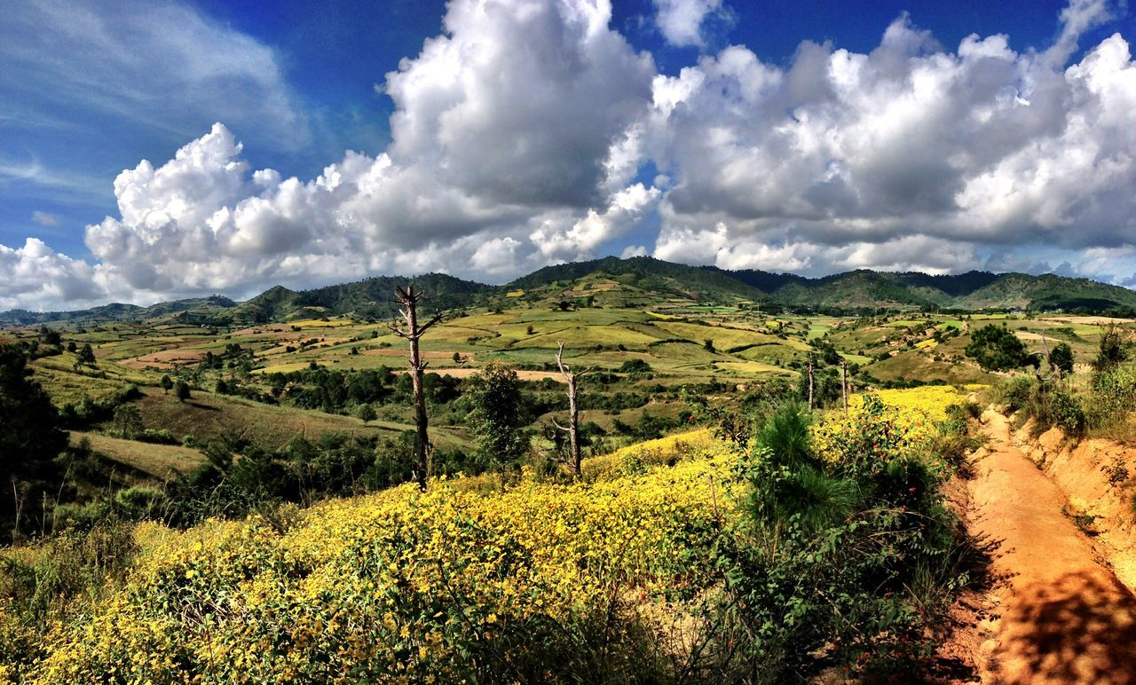 ShotOnIphone Myanmar Myanmarphotos Burma Trekking Nature_collection Beauty In Nature Nature Sky And Clouds Green Landscape Landscape_Collection Landscape_photography