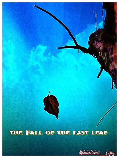 The fall of the last leaf