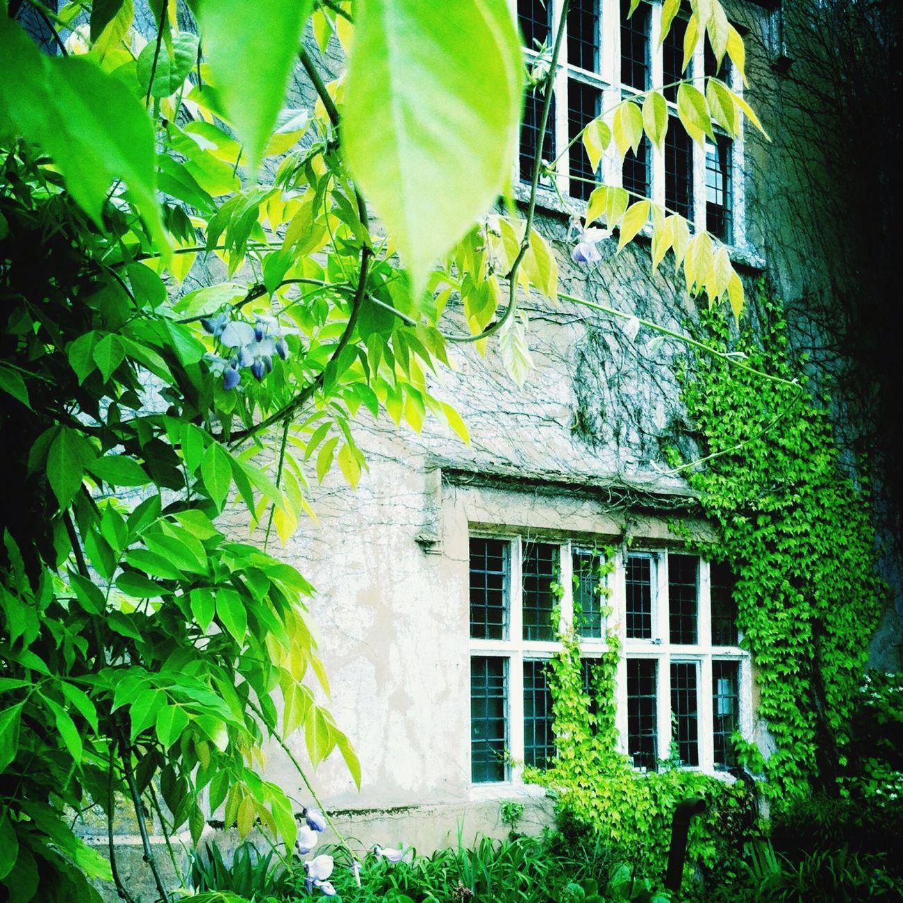 Hampshire  Historic Window Taking Photos