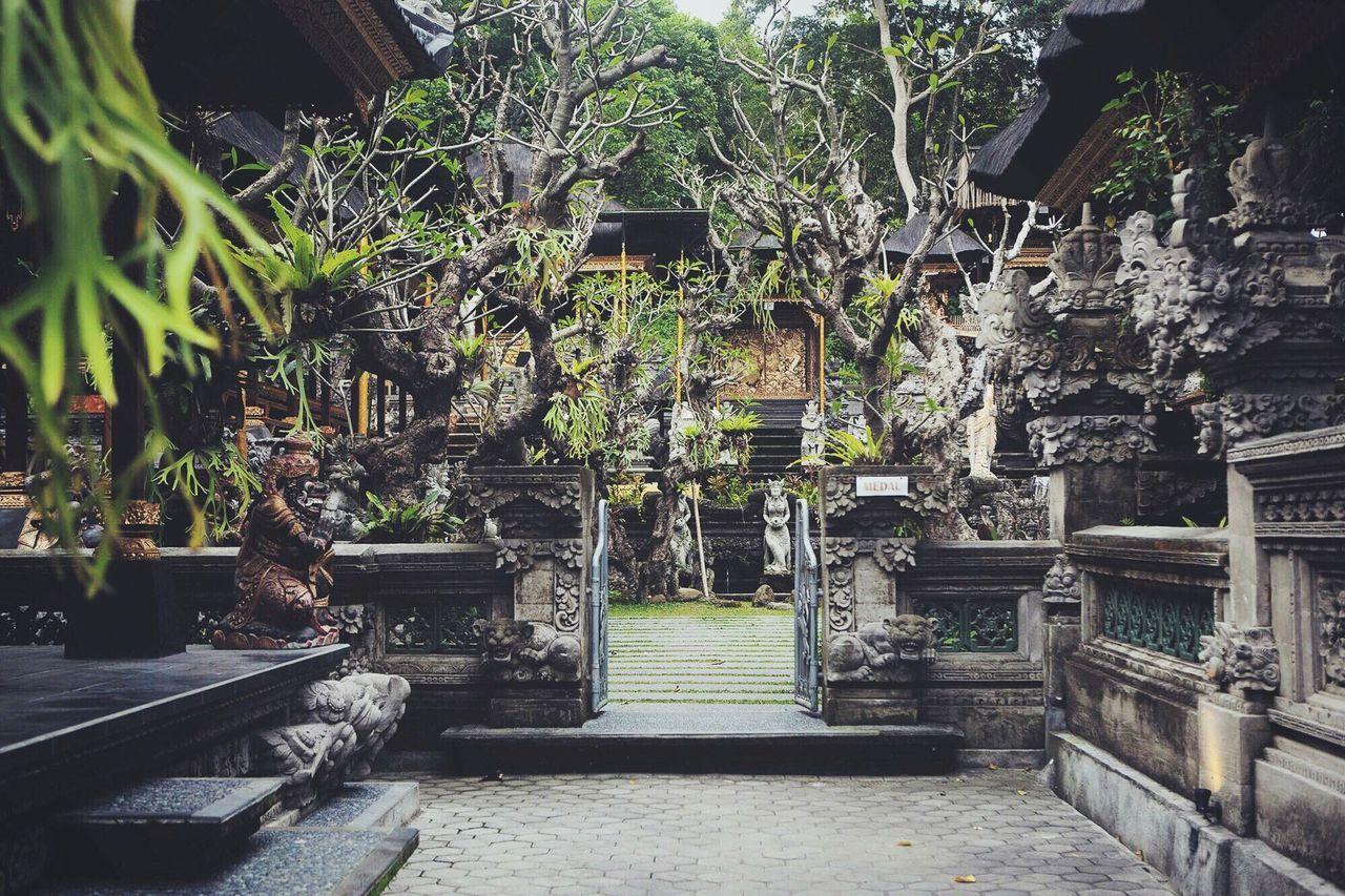 Bali Bali, Indonesia Ubud Temple Nature Architecture INDONESIA Indonesia_photography Ubud, Bali Green
