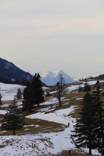 Alps Austria Austria Mountains Austria Photos Austria ❤ Austrian Alps Austrian Mountains Austrianphotographers Mountain Mountains