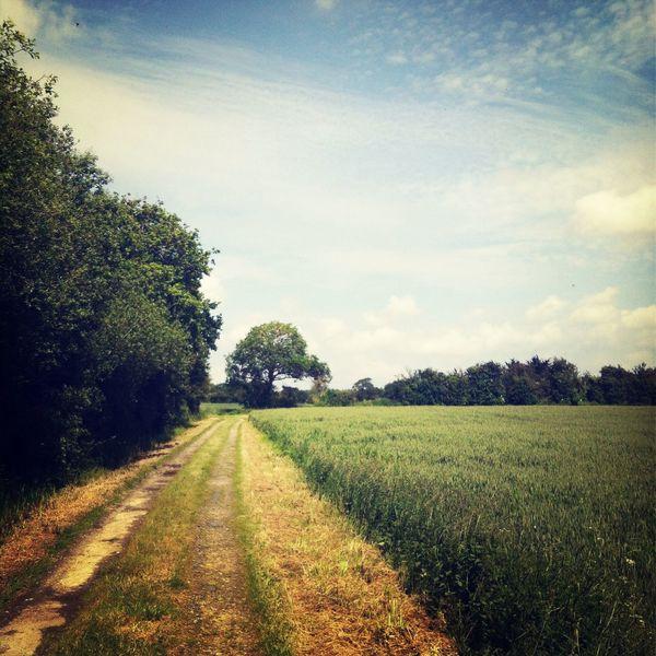 Normandie être Loin Walking Alone...