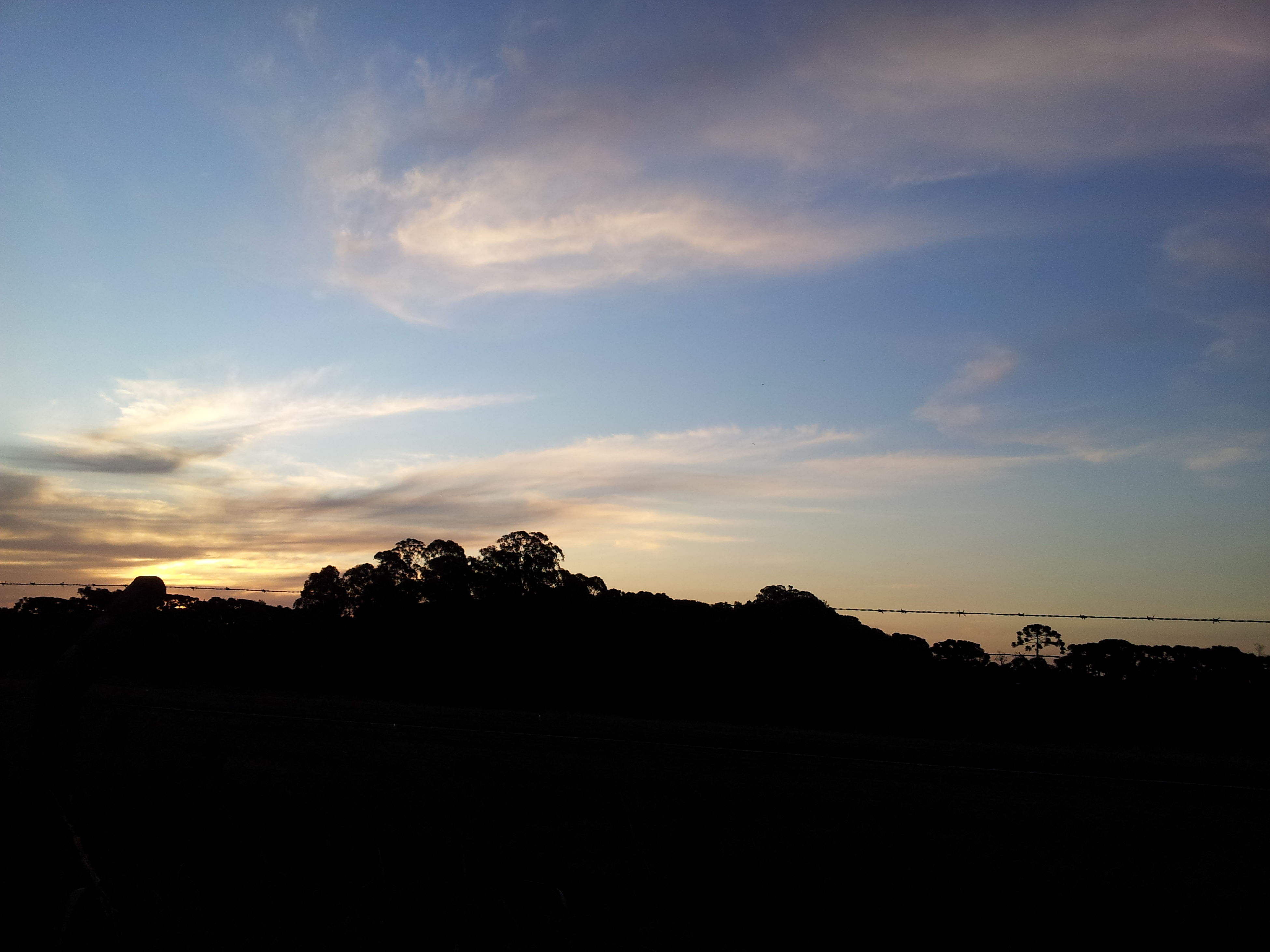 silhouette, sunset, sky, tranquil scene, landscape, tranquility, scenics, beauty in nature, tree, nature, cloud - sky, field, cloud, dark, dusk, idyllic, outdoors, outline, copy space, non-urban scene
