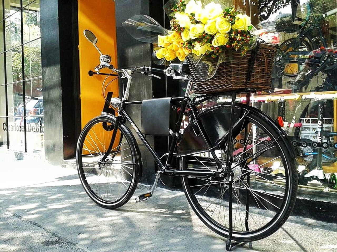 Classy Classy Bicycle Transportation No People Flowers Beautiful Day Cdmx Cdmx2016